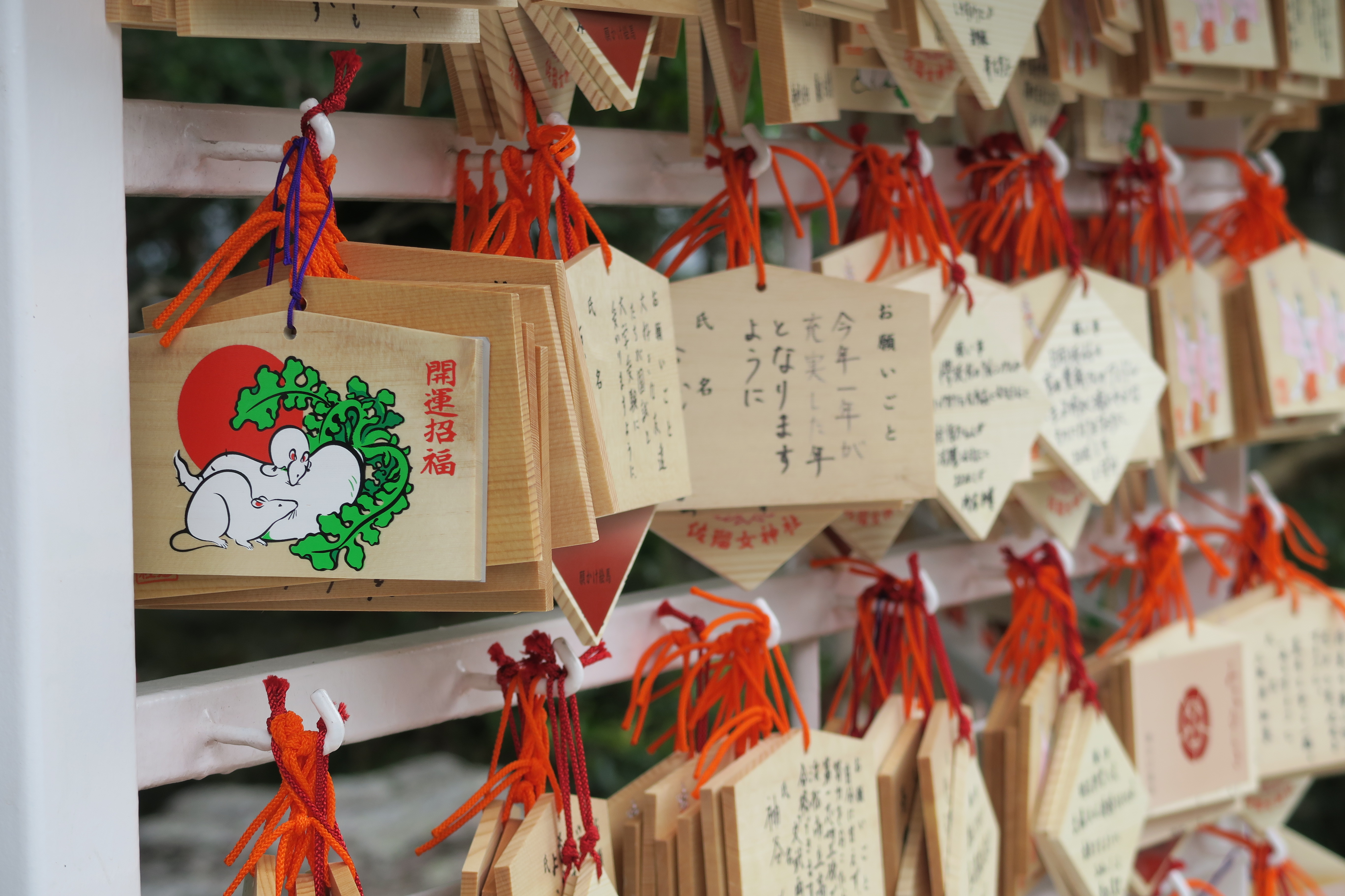 Prayer boards at Sarutahiko Shrine