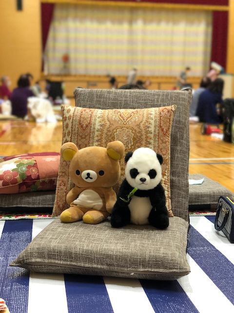 two stuffed bears sit on a cushion in a school gym